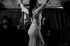 Flamenco Show in Granada, 2017.